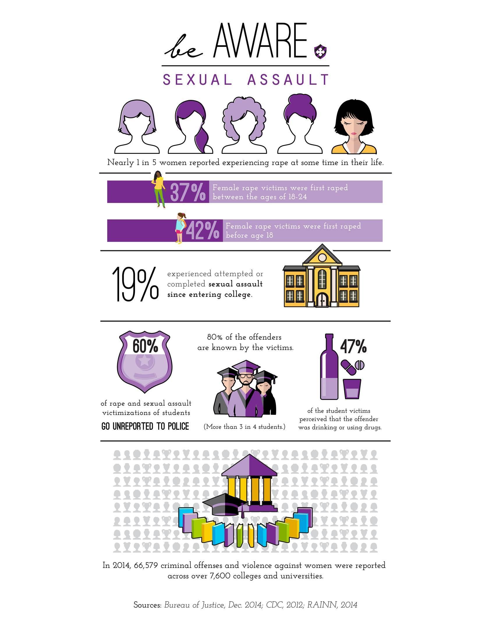 Sexual Assault Statistics - Bag of Courage